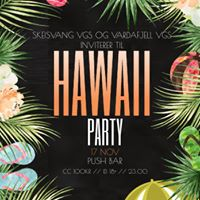 Hawaii Party  Host Skeisvang Vardafjell VGS  Push  ID 18
