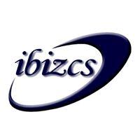 IBIZ Consulting Services