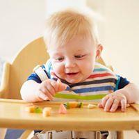 Taller de Baby-Led Weaning en Aranda de Duero