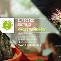 Curso cultivo de cactus y crasas 1 l Inscripcin abierta.