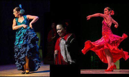 Noche de Flamenco with Los Flamencos de San Antonio