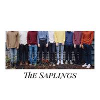 Jack Martini with The Saplings