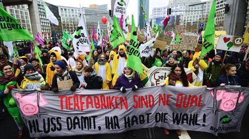 Fahrt zur Wir haben es satt-Demo in Berlin