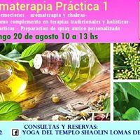 Aromaterapia Practica Primer Nivel