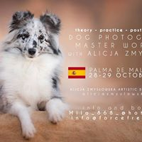 Dog Photography Workshop with Alicja Zmysowska - MallorcaSpain