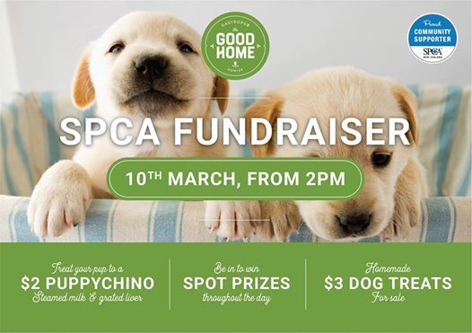 SPCA Fundraiser 10th March 2pm