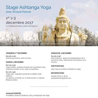 Ashtanga yoga et yoga Ndra - Arnaud Kancel