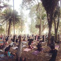 Yoga no Parque no Vicentina