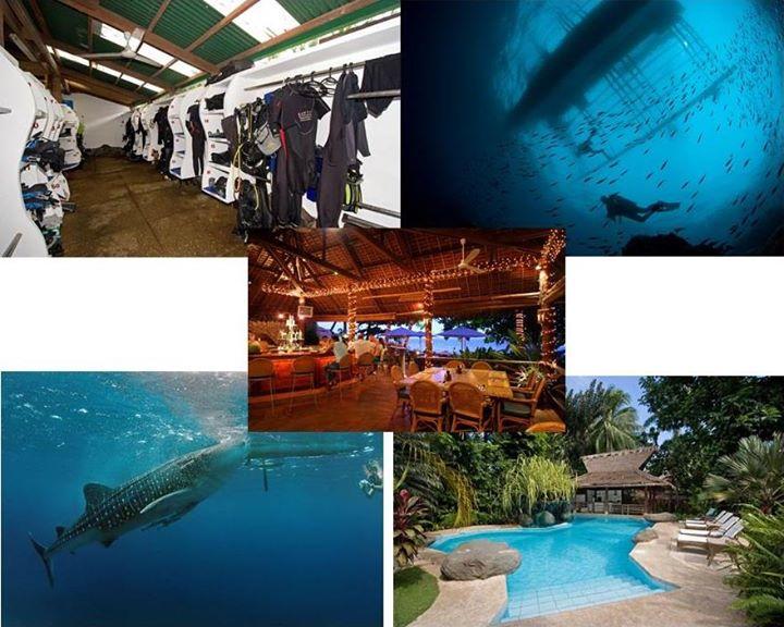 Come Dive Dunagete Philippines