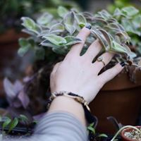 Yoga for Gardeners w Fawn Williams