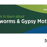 Cankerworm &amp Gypsy Moth Workshop