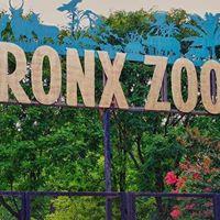 Bronx Zoo Private Tour