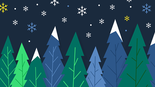 Boston Road Christmas Trees & Festive Shop