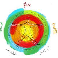 Workshop de Constelao dos 5 Elementos