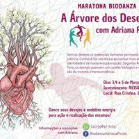rvore dos Desejos - maratona de Biodanza