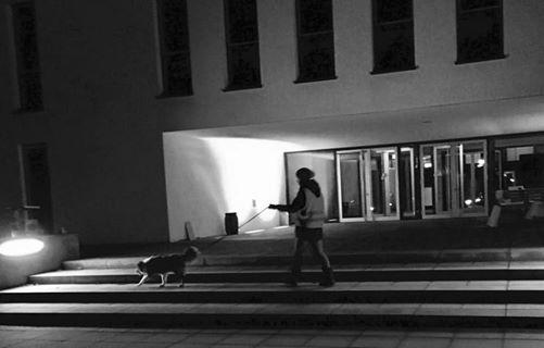 Mantrailing Bayreuth