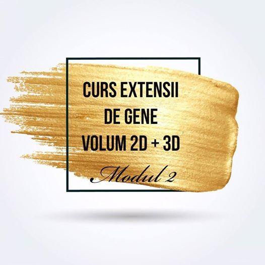 Curs extensii de gene Volum 2D3D