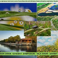 GREEN GRAIN 12102017 for Torino Design of the City &amp WDO