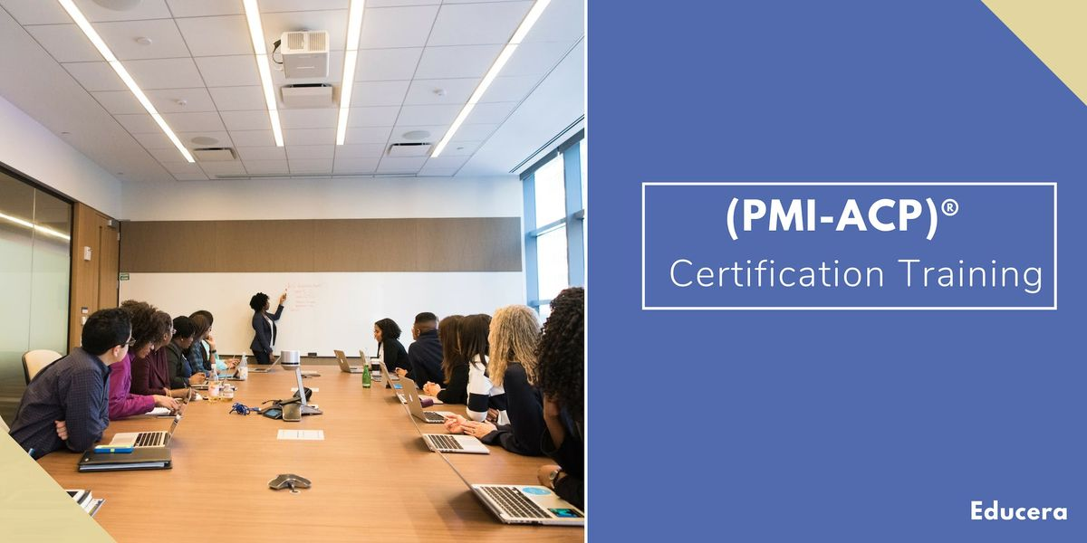 PMI ACP Certification Training in Chicago IL
