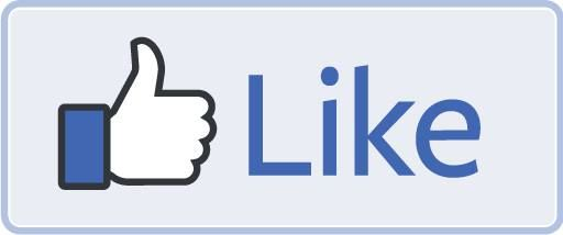Be Your Own Boss - Facebook from Scratch - Dumfries