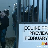 Olds College Equine Program Preview Day