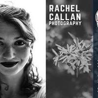 Art Opening with Rachel Callan