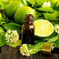 Aromatherapy Emotional Awareness &amp Stress Relief Workshop