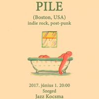 Pile (USA)