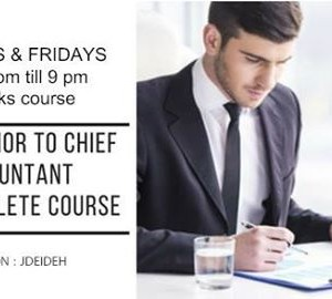 From Junior to CHIEF Accountant the complete course