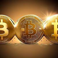 Bitcoin Learn and Earn 2.0