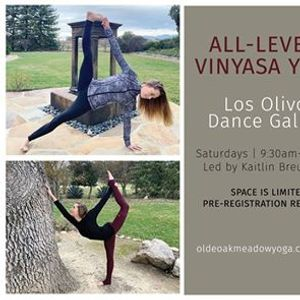 Kaline Alayna Kelly Vinyasa Yoga events in the City. Top Upcoming ... 828f4c8281ba