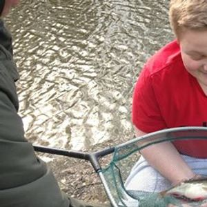 Free Lets Fish - Middleport - Trent & Mersey Canal - Learn to Fish...