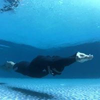 Fundamentals of Freediving Course (AIDA 2)