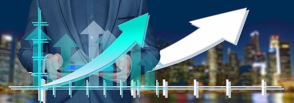 Business & Marketing Basics Workshop - Increase Leads Generate Profit