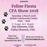 FELINE FIESTA CFA SHOW 2018