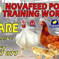 Novatek Poultry Training