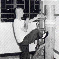 Seminario&quot Muk Yan Jong&quot ( Mueco de Madera ) Wing Chun