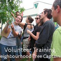 Tree Specialist Training (Tree ID Hike) Session 2