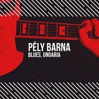 Ply Barna (HUN)  Concert de blues