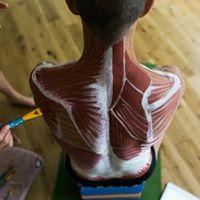 Dublin 3 Day Yoga Anatomy Training with Karen Kirkness