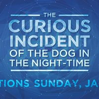 Auditions for The Curious Incident of the Dog in the Night-time