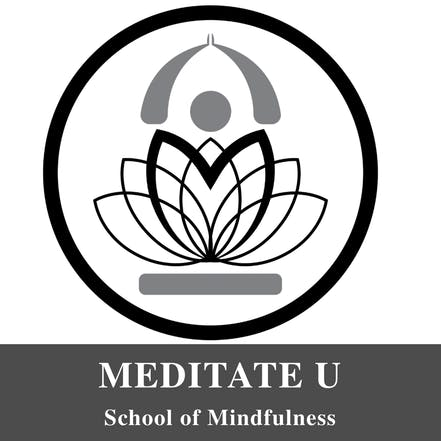Immersion into Mindfulness and Meditation Course (Teacher ...