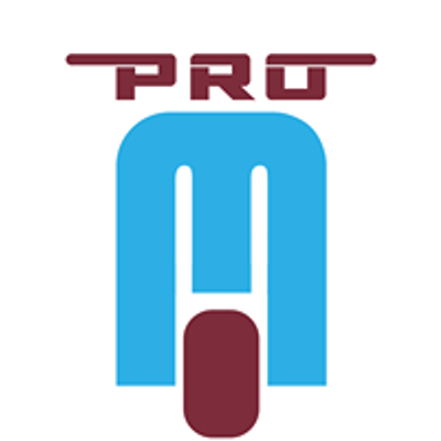 PRO-MOses, LLC