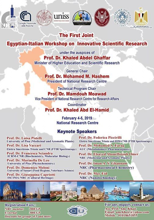1st Joint Egyptian-Italian Workshop on Innovative Scientific Res