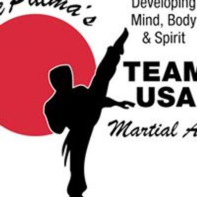 DePalmas Team USA Martial Arts - South Gilbert