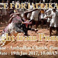 Voice for Jallikattu - Pune