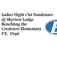 Ladies Night Out Fundraiser