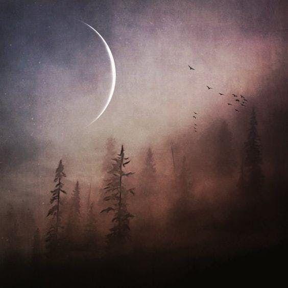 February New Moon Circle