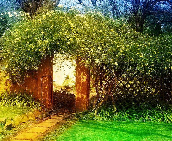 The secret garden at the mezzanine colorado springs for Secret garden colorado springs