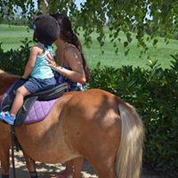 Pony Rides - PGA Summer Activities 2017